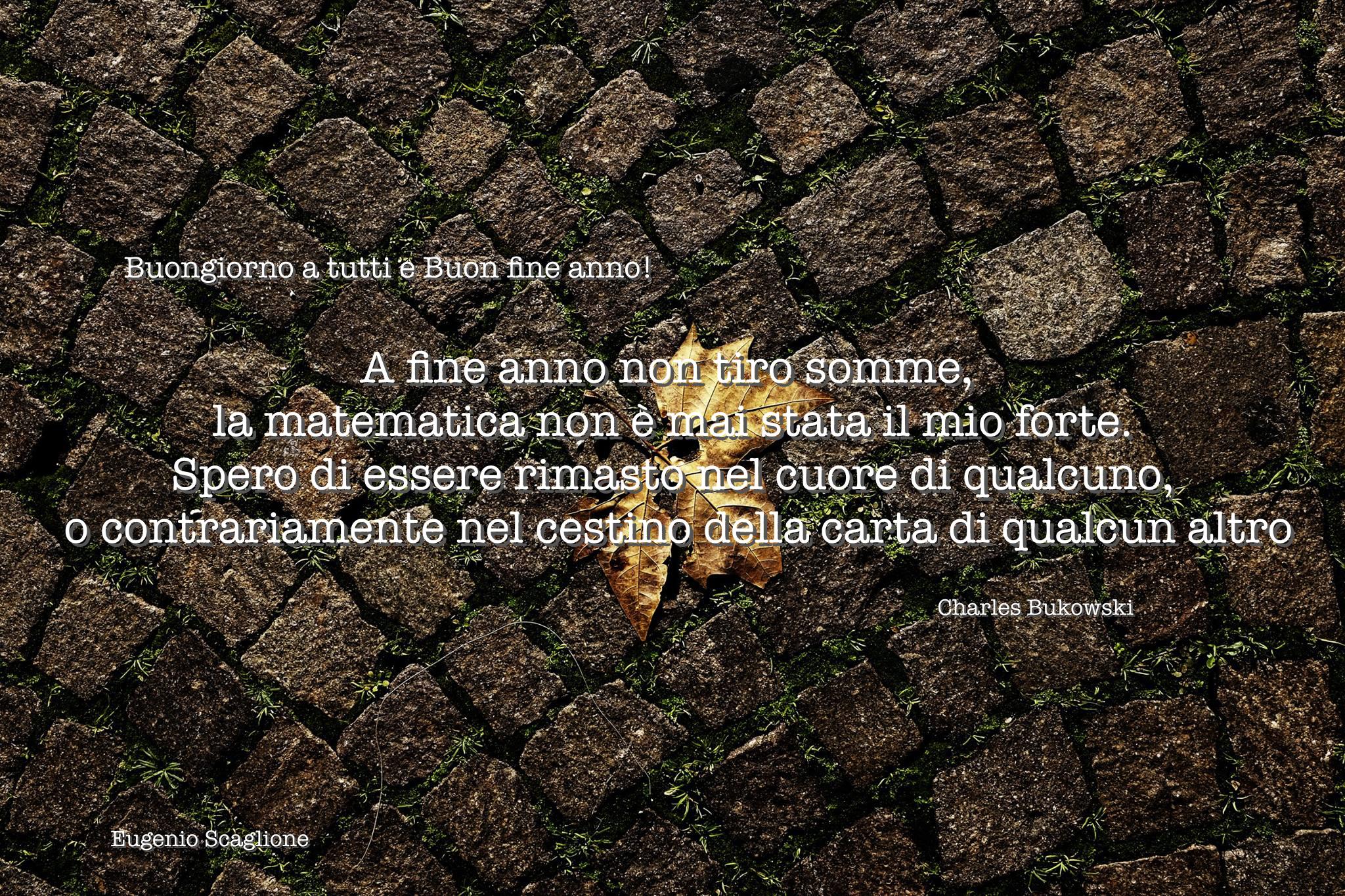 Scaglio foglia morta_ buongiorno 2015 12 31